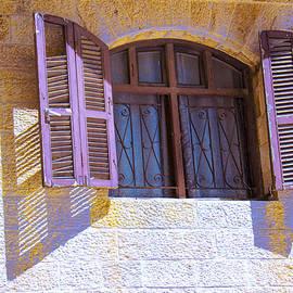 Ben and Raisa Gertsberg - Colorful Window Shutters