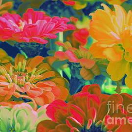Photographic Art and Design by Dora Sofia Caputo - Colorful Zinnias Pop Art
