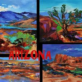 Elise Palmigiani - Colors of Arizona