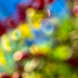 Alexander Senin - Colors Of Autumn - Featured 3