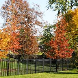 Judy Palkimas - Colors of Fall