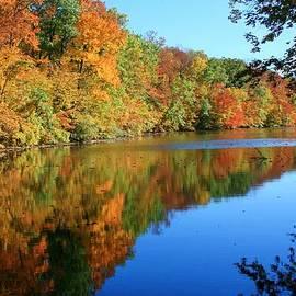 Susan  McMenamin - Colors of Fall