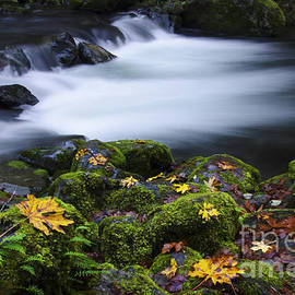 Bob Christopher - Columbia River Gorge Tanner Creek 1