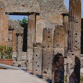 Ivete Basso Photography - Columns Of Pompeii