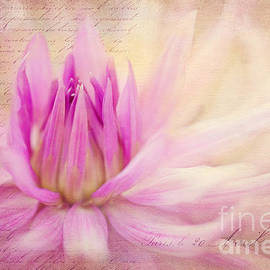 Reflective Moment Photography And Digital Art Images - Come Spring