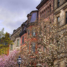 Joann Vitali - Commonwealth Ave Row Houses - Boston