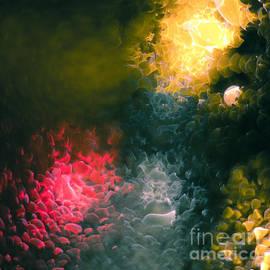 Pete Edmunds - Condensation 92 - You