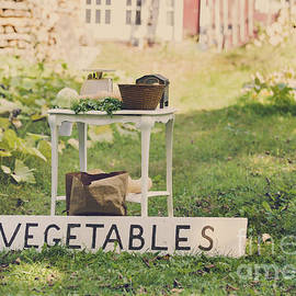 Diane Diederich - Connecticut Vegetable Stand