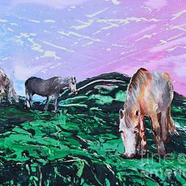 Alys Caviness-Gober - Connemara Ponies