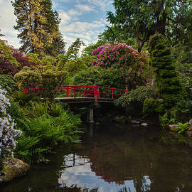 Mike Reid - Contemplative Northwest Garden