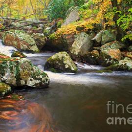 Darren Fisher - Cool Waters of Autumn