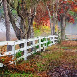 Scott Hansen - Coosaw Horse Fence