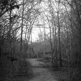 James Granberry - Coot Creek