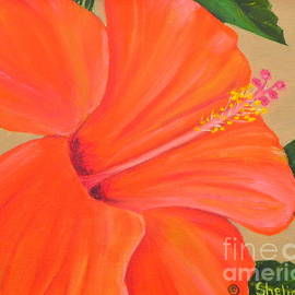 Shelia Kempf - Coral Delight - Hibiscus Flower
