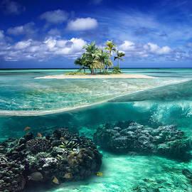 BK Hook - Coral Island