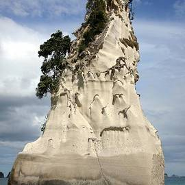 Barbie Corbett-Newmin - Coromandel Rock