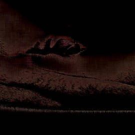 Choco Friedrich - Corpus Delicti