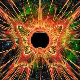 Shawn Dall - Cosmic Butterfly Phoenix