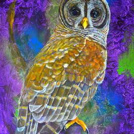 AnnaJo Vahle - Cosmic Owl