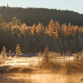 Jim Cumming - Costello Creek - Algonquin Park