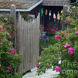 Georgia Sheron - Cottage Doorway