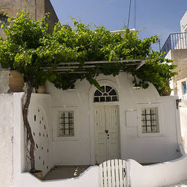 Brenda Kean - Cottage with Vine Santorini