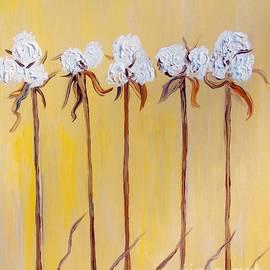 Eloise Schneider - Cotton Chorus Line