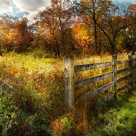 Mike Savad - Country - Autumn years
