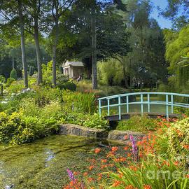 Darren Wilkes - Country Garden