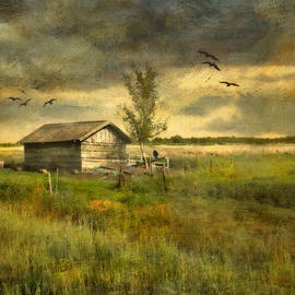 Annie  Snel - Country Life