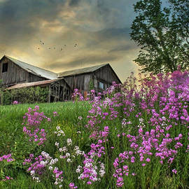 Lori Deiter - Country Living 3