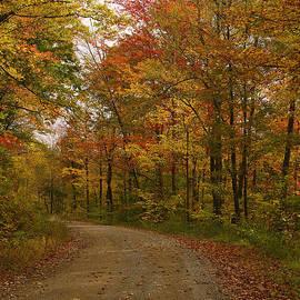 Ulrich Burkhalter - Country road.....WV