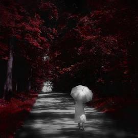 Michael Huddleston - Country stroll
