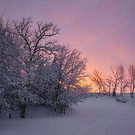 Nikolyn McDonald - Country Sunset - Farm in Winter