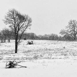 Sarah Rodefeld - Country Winter