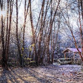 Debra and Dave Vanderlaan - Covered Bridge in the Winter