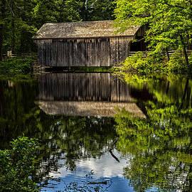 Karol  Livote - Covered Reflections