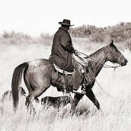 Cindy Singleton - Cowboy and Dogs