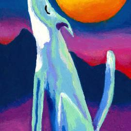 Stephen Anderson - Coyote Azul