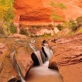 Adam Paashaus - Coyote Falls