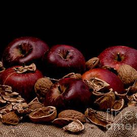 Mike Santis - Apples and nutshells