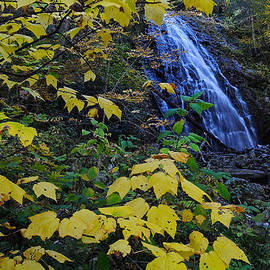Matt Plyler - Crabtree Falls with Fall Leaves - North Carolina waterfalls