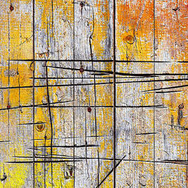 Carlos Caetano - Cracked Wood Background