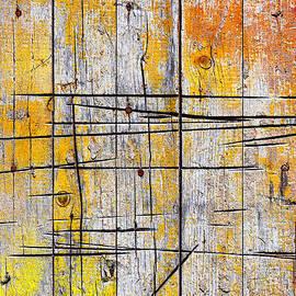 Carlos Caetano - Cracked Wood Background