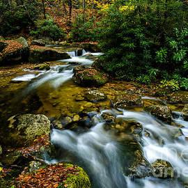 Thomas R Fletcher - Cranberry Wilderness Autumn