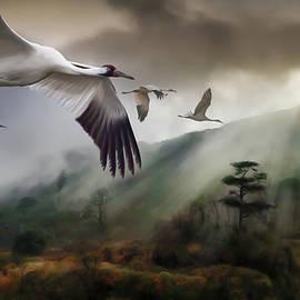 Don Olea - Cranes Over Ming Xi