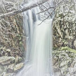 Elaine Teague - Crater Falls in Tasmania