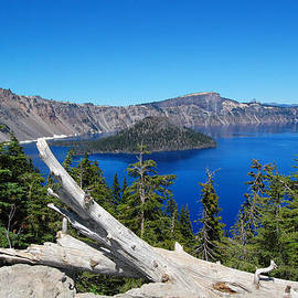 Debra Thompson - Crater Lake And Fallen Tree