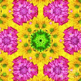 Andee Design - Crazy Daises - Spring Flowers - Bouquet - Gerber Daisy Wanna Be - Kaleidoscope 1