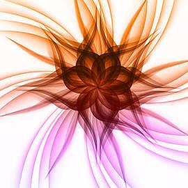 Nick Bergstrom - Crazy Flower
